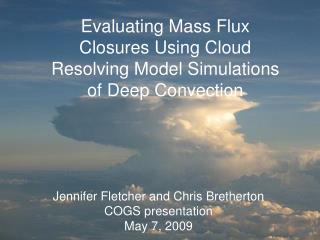 Evaluating mass flux closures using cloud resolving model simulations of deep convection