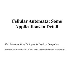 Cellular Automata: Some Applications in Detail