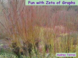 Fun with Zeta of Graphs