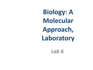Biology: A Molecular Approach, Laboratory