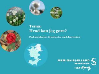 Tema: Hvad kan jeg g�re? Psykoedukation til patienter med depression
