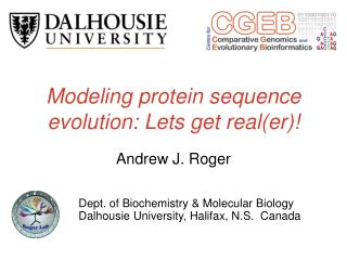 Modeling protein sequence evolution: Lets get real(er)!