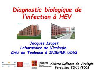 Diagnostic biologique de l�infection � HEV