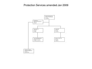 Protection Services amended Jan 2009