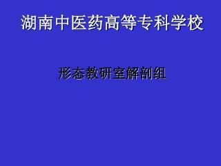 湖南中医药高等专科学校 形态教研室解剖组