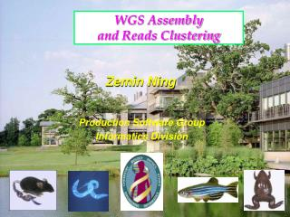 WGS Assembly  and Reads Clustering