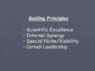 Guiding Principles  Scientific Excellence  Internal Synergy  Special Niche/Visibility
