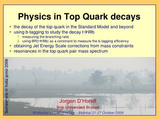Physics in Top Quark decays