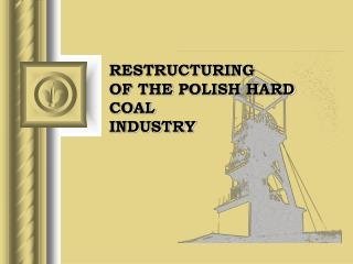 RESTRUCTURING OF  THE  POLISH HARD COAL INDUSTRY