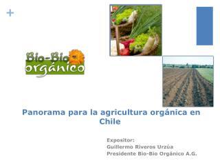 Panorama para la agricultura orgánica en Chile
