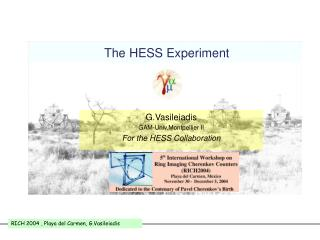 The HESS Experiment