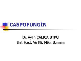 CASPOFUNGİN