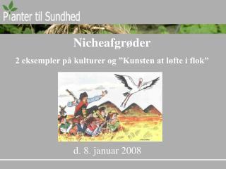"""Nicheafgrøder 2 eksempler på kulturer og """"Kunsten at løfte i flok"""""""