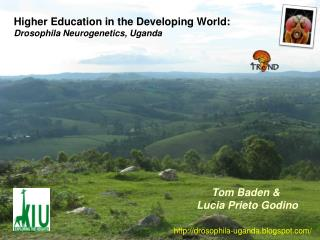 Higher Education in the Developing World: Drosophila Neurogenetics, Uganda