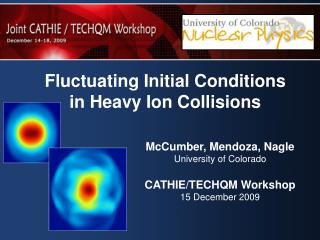 Fluctuating Initial Conditions in Heavy Ion Collisions