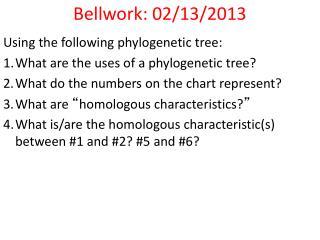 Bellwork: 02/13/2013