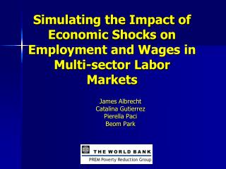 Simulating the Impact of Economic Shocks on Employment and Wages in Multi-sector Labor Markets