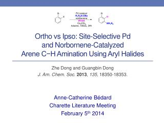 Ortho vs Ipso: Site-Selective Pd  and Norbornene-Catalyzed  Arene C−H Amination Using Aryl Halides
