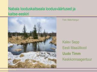 Nabala looduskaitseala loodusväärtused ja kaitse-eeskiri