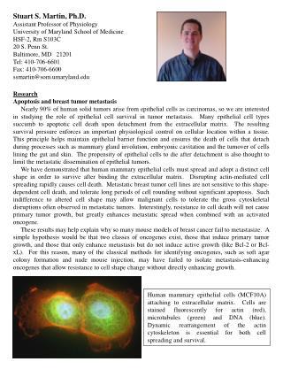 Stuart S. Martin, Ph.D. Assistant Professor of Physiology