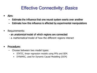 Effective Connectivity:  Basics
