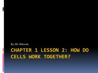 Chapter 1 lesson 2: How do cells work together?