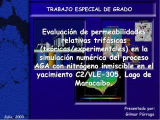 TRABAJO ESPECIAL DE GRADO