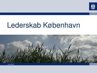 Lederskab København