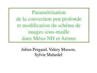 Julien Pergaud, Valery Masson, Sylvie Malardel