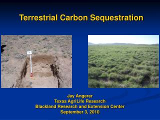 Terrestrial Carbon Sequestration