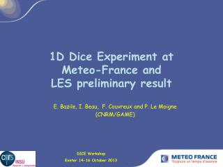 1D Dice Experiment at  Meteo-France and  LES preliminary result