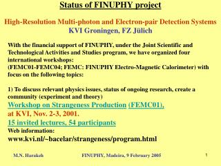 Status of FINUPHY project High-Resolution Multi-photon and Electron-pair Detection Systems