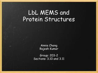 LbL MEMS and Protein Structures