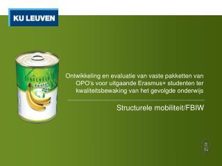 Structurele mobiliteit/FBIW