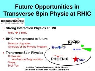 Future Opportunities in Transverse Spin Physic at RHIC