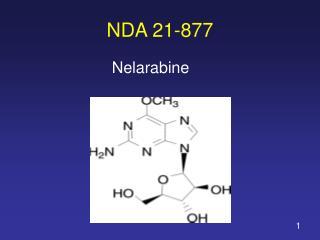 NDA 21-877