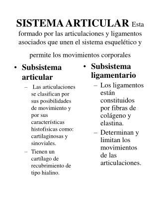 Subsistema articular