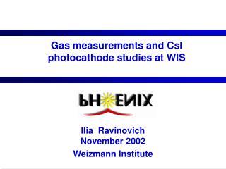 Gas measurements and CsI photocathode studies at WIS