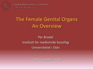 The Female  Genital Organs An  Overview