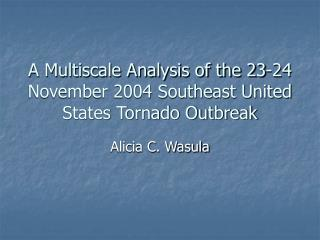 A Multiscale Analysis of the 23-24 November 2004 Southeast United States Tornado Outbreak