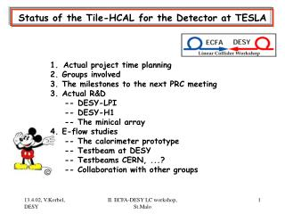 Status of the Tile-HCAL for the Detector at TESLA