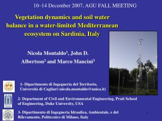 Nicola Montaldo 1 , John D. Albertson 2 and Marco Mancini 3