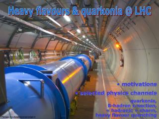 Heavy flavours & quarkonia @ LHC