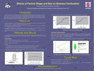 Effects of Particle Shape and Size on Biomass Combustion