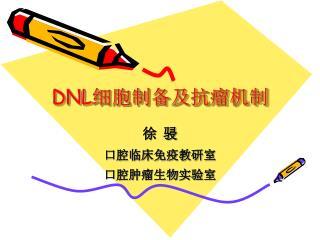 DNL 细胞制备及抗瘤机制