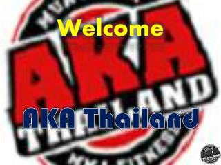 Muay Thai and Mixed Martial Arts Training in Thailand
