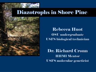Diazotrophs in Shore Pine