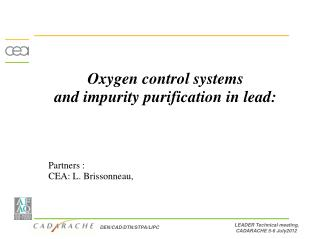 Oxygen control systems  and impurity purification in lead: