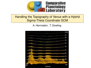 Handling the Topography of Venus with a Hybrid Sigma-Theta Coordinate GCM