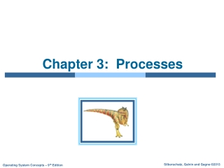 Chapter 3 Consumer Memory Part 1